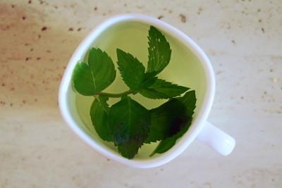 świeża miętowa herbata_100happydays.pl