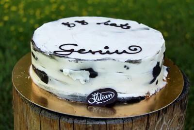 tort z korą brzozy!